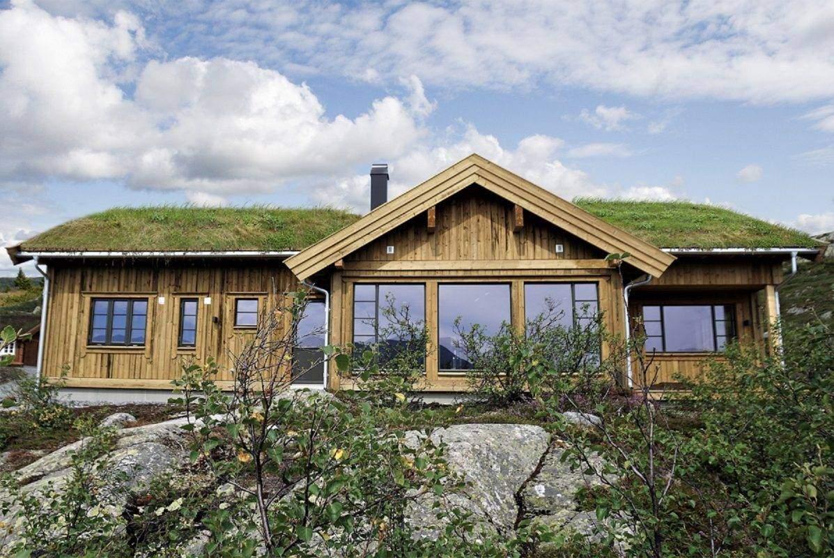 110 Hyttemodell Høgevarde 127 198-36