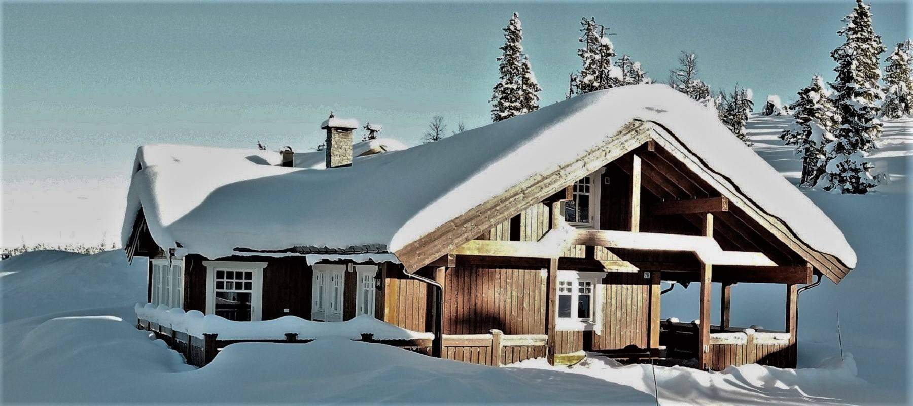 112 Hyttemodell Trysil 110A