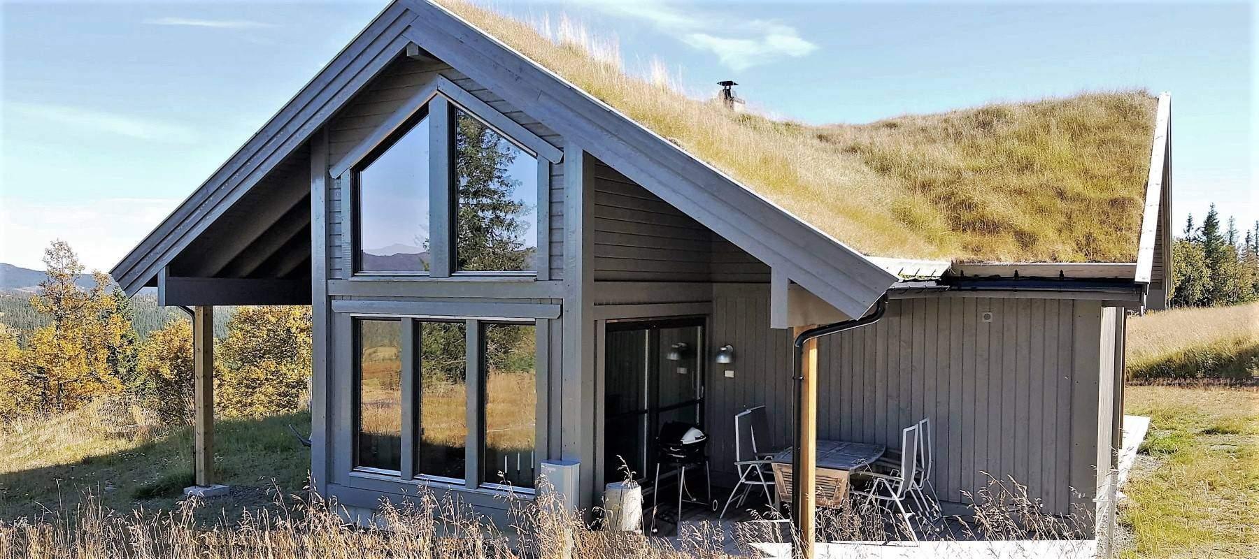 14 Hyttemodell Strynsfjell 113