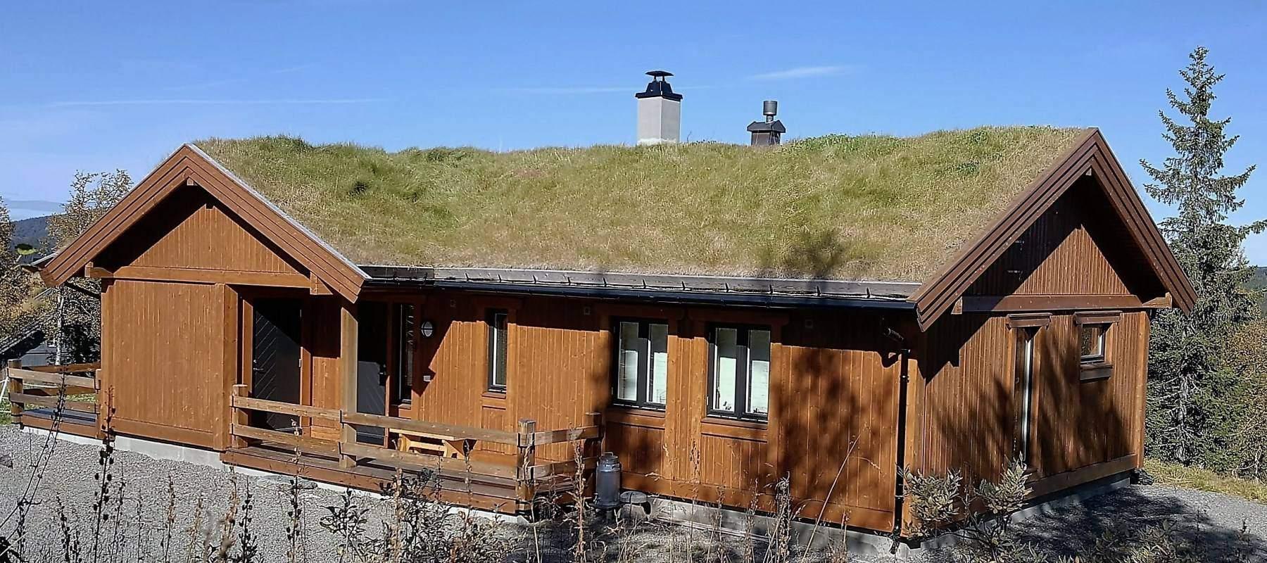 160 Hytte Stryn 96 på Synnfjell