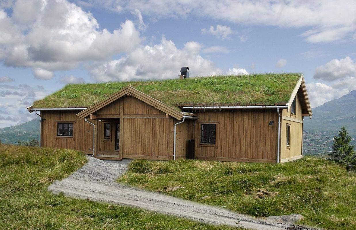 194 Hyttemodell Høgevarde 127 198-94