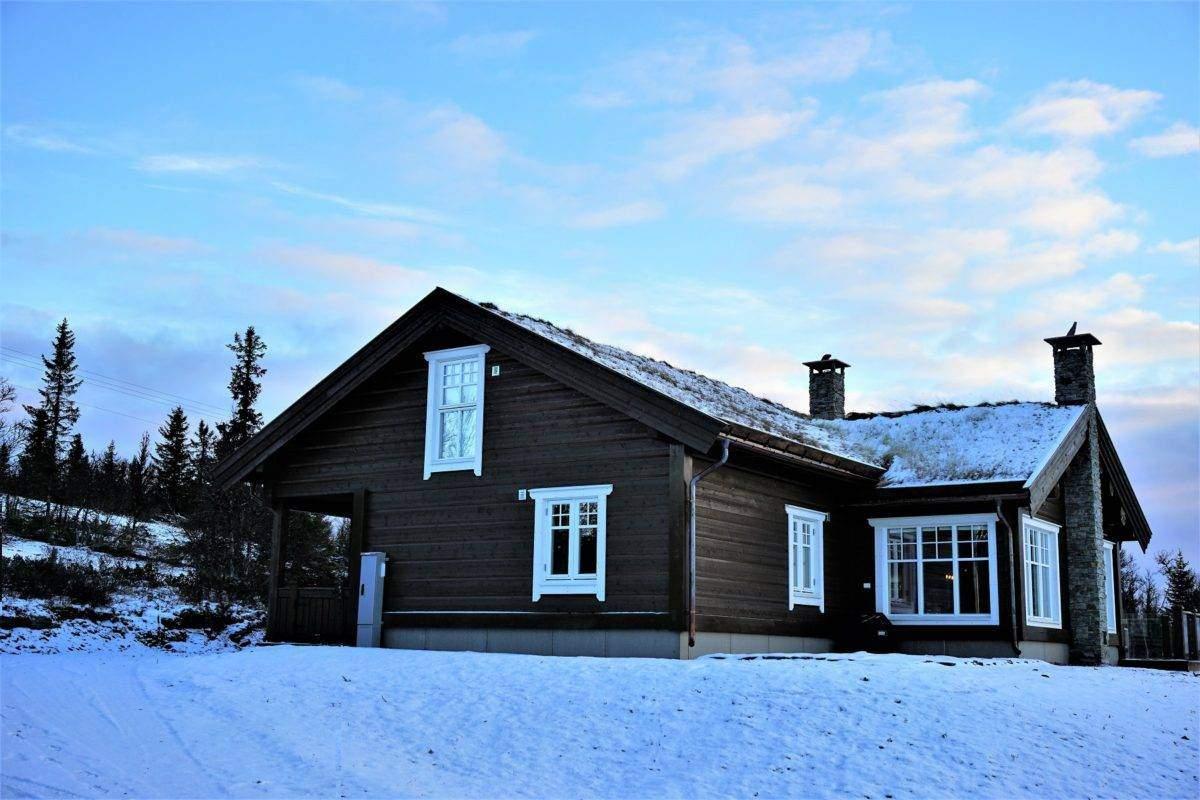 220 Hyttemodell Hytte Hemsedal 120