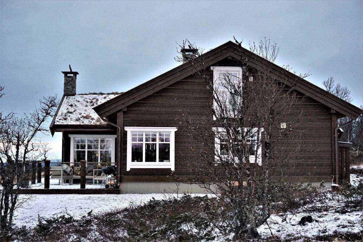 234 Hyttemodell Hytte Hemsedal 120