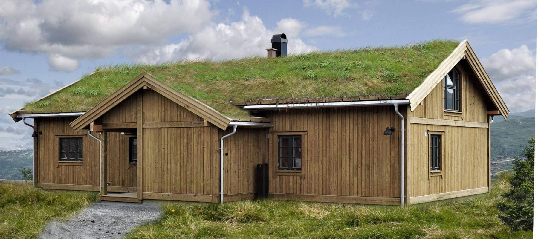 24 Hyttemodell Høgevarde 127. Inngangsiden