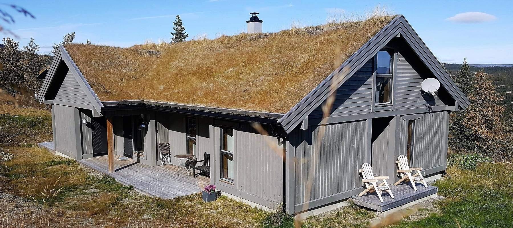 26 Hyttemodell Strynsfjell 113