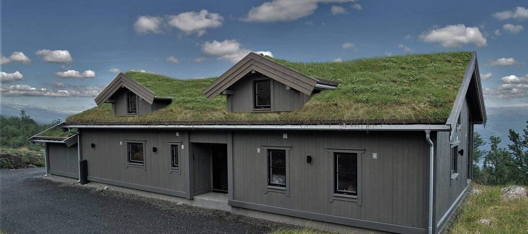 3650 Hytteleverandør Arkitektegnet Hytte Uvdal