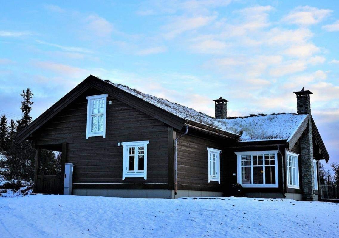 38 Hyttemodell Hytte Hemsedal 120