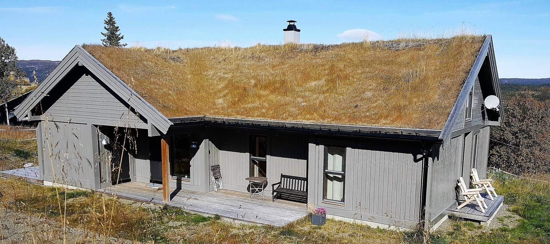 50 Hyttemodell Strynsfjell 113