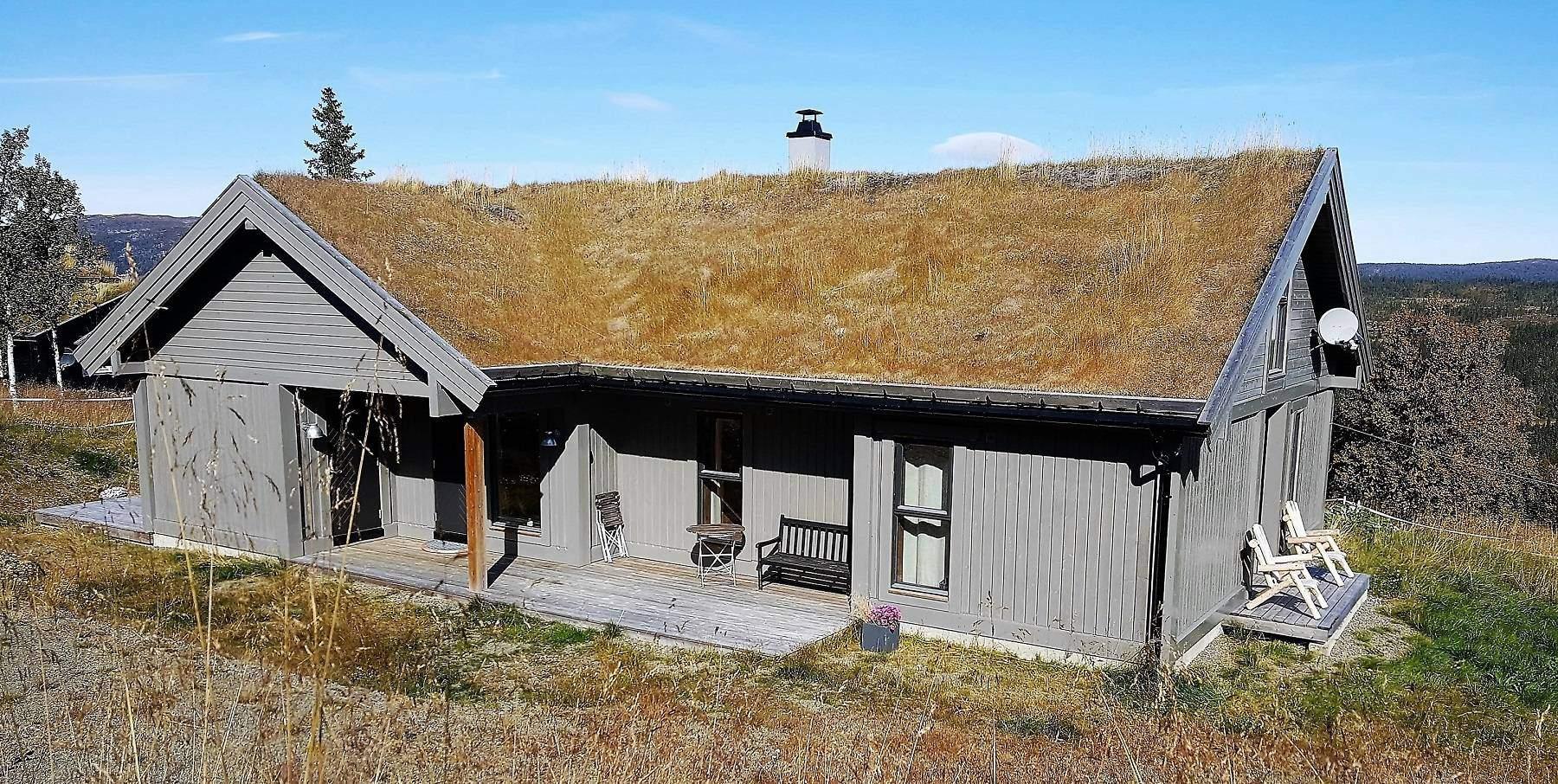 20 Hyttemodell Strynsfjell 113