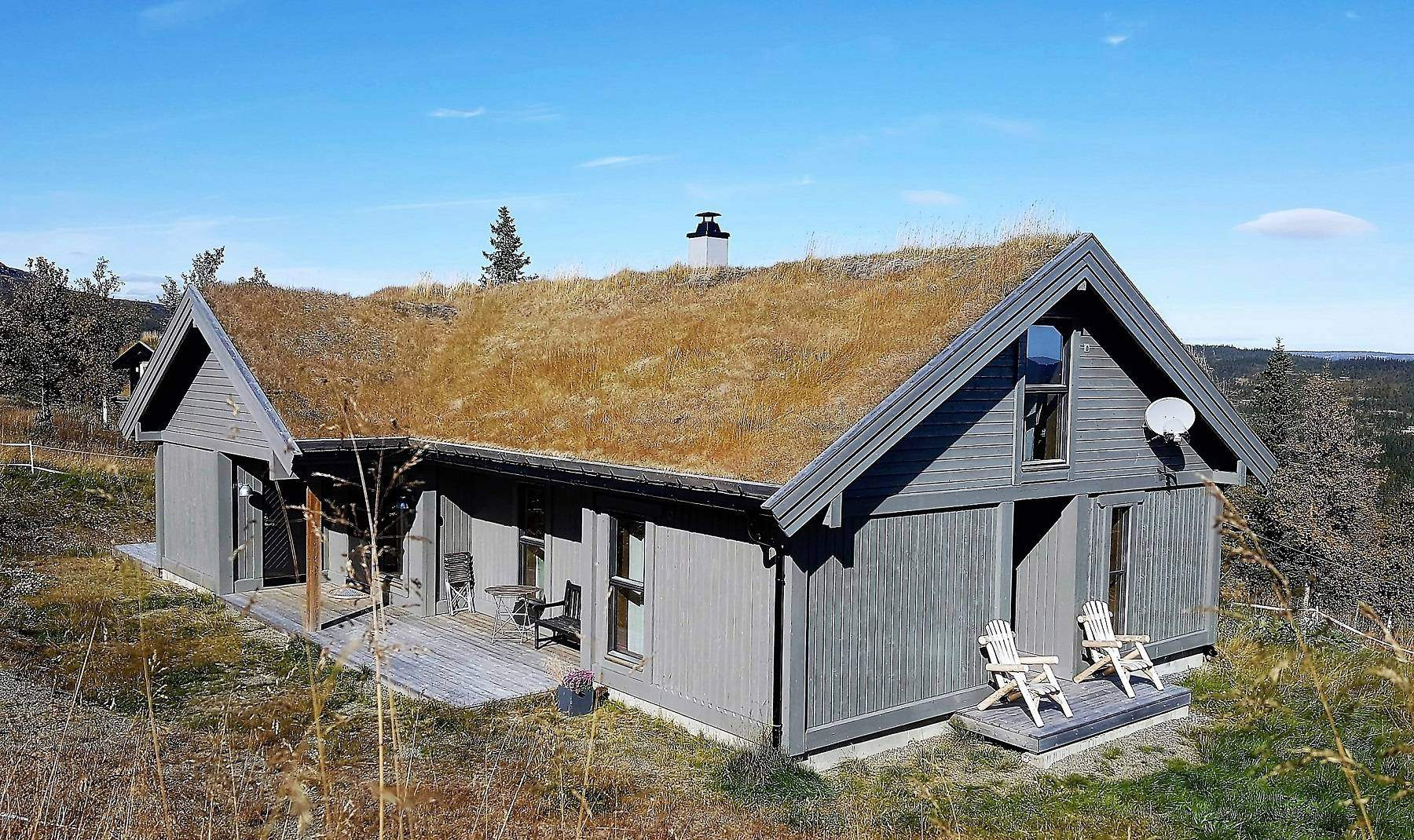 21 Hyttemodell Strynsfjell 113